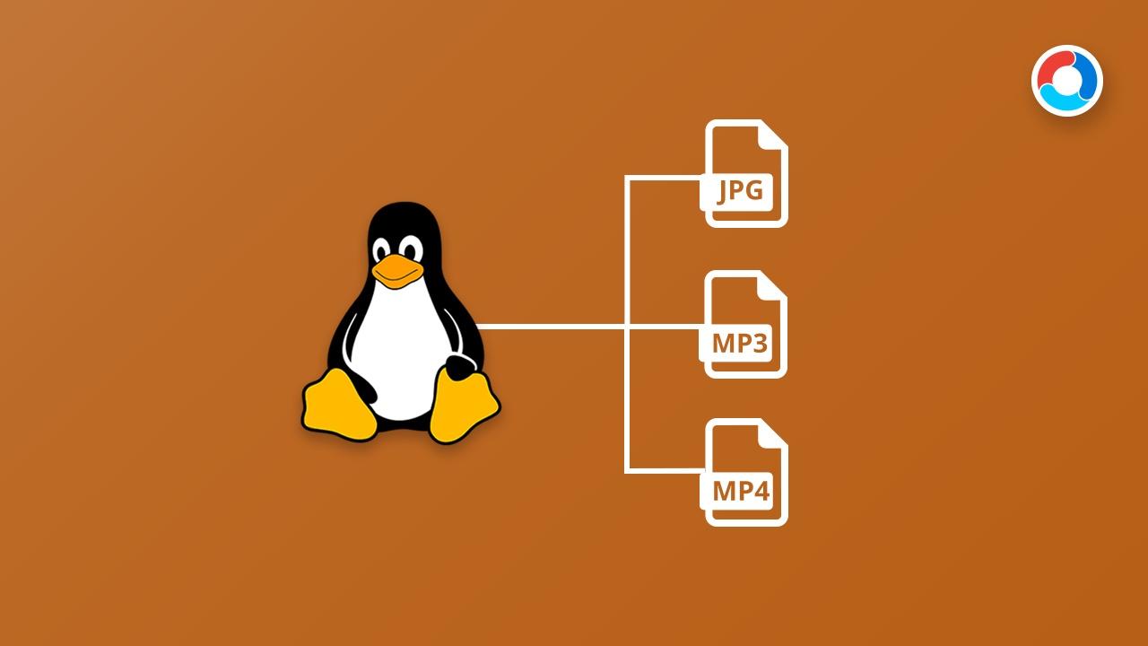 Aprende a listar tus ficheros en Linux con el comando ls