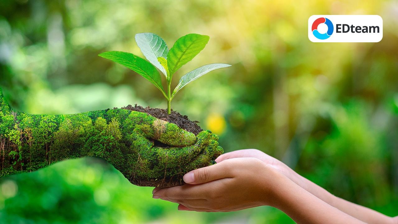 5 Formas de cuidar el medio ambiente 💚