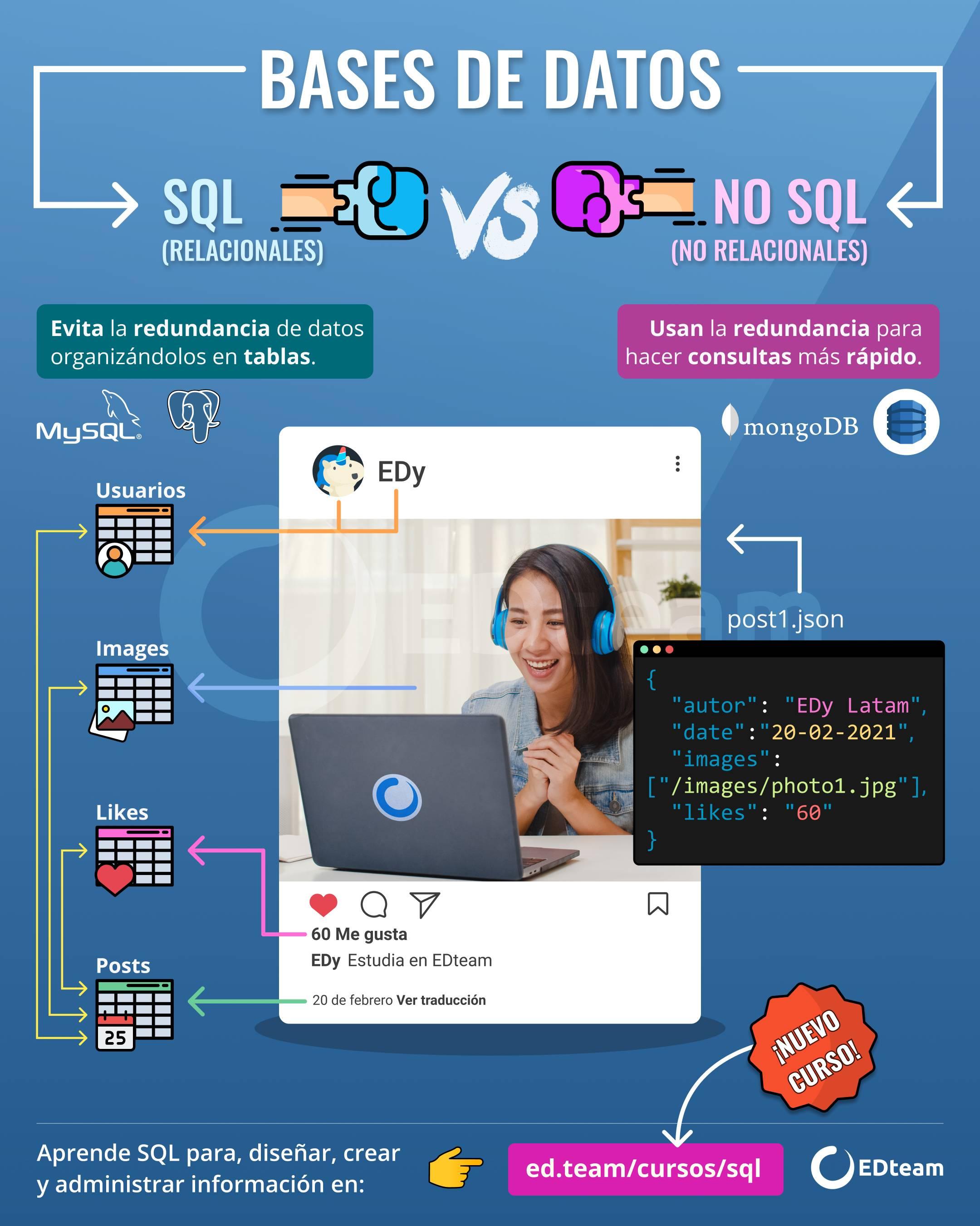 Infografía del curso